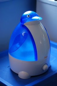 Do You Put Water in a Humidifier