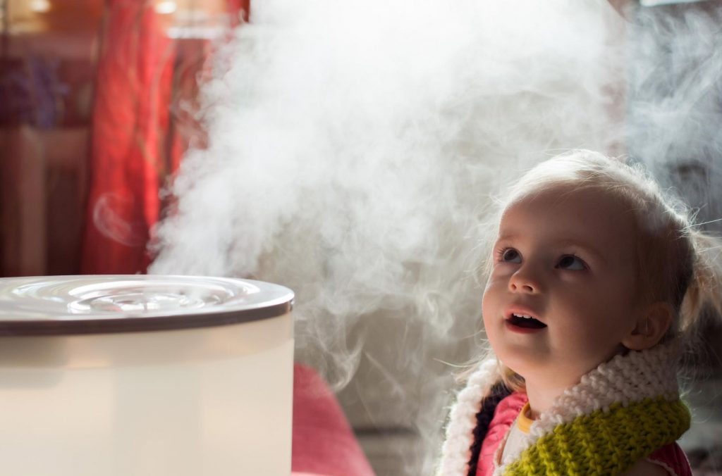 difference between Warm Mist Humidifier vs Vaporizer