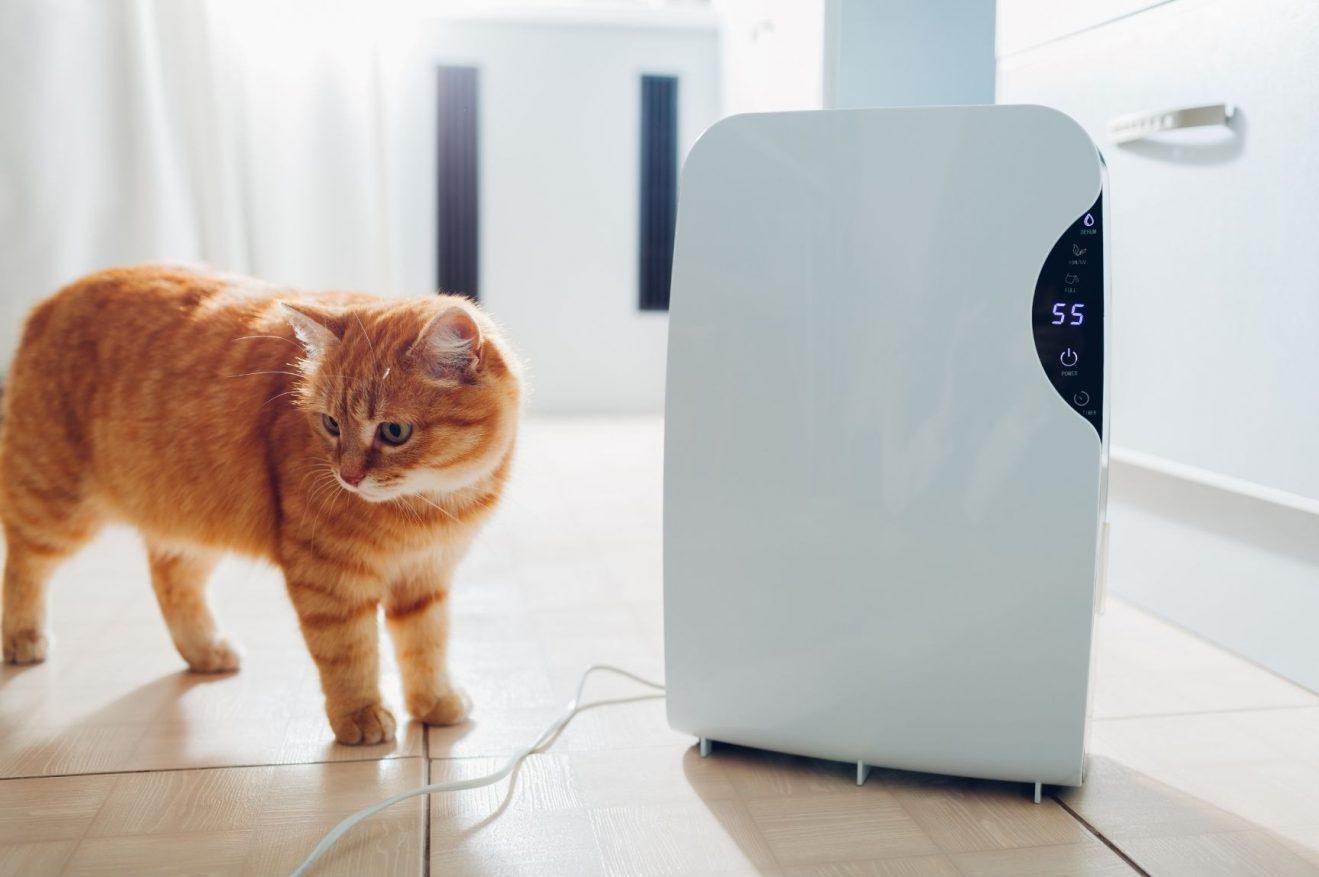do. dehumidifiers cool the air