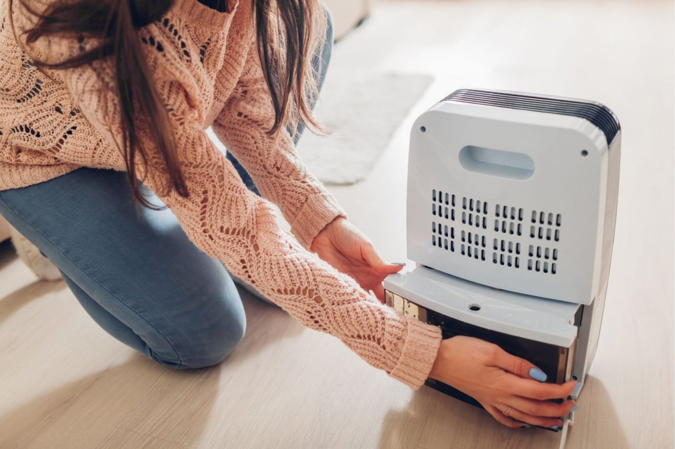 What to Look For in a Dehumidifier
