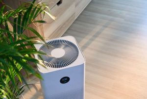 Should You Use Air Purifier and Diffuser at the Same Time