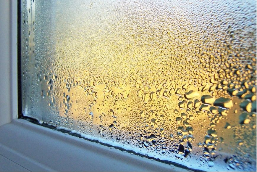 symptom of high humidity in your home